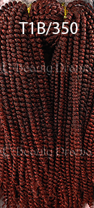 nubin-twist-braid-color-t1b-350.jpg
